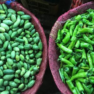 New SHEFS study links global environmental changes to future vegetable and legume production